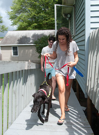 08/01/18 Wesley Bunnell | Staff Samela Santana leads Buddy, a blind 8 year old Labrador retriever she recently adopted with Robert Genuario up a ramp on their home on Wednesday afternoon. Due to glaucoma both of Buddy's eyes required surgery and removal while up for adoption at the Connecticut Humane Society's Newington location.