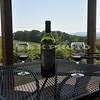 wine_tasting_20100429_405
