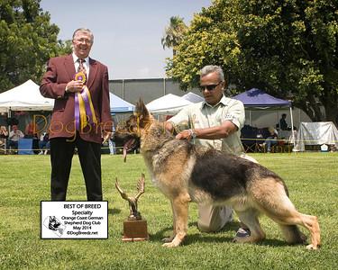 Orange Coast German Shepherd Dog Club - May 2014