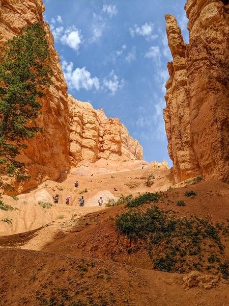 2019 Grand Canyon-464.jpg