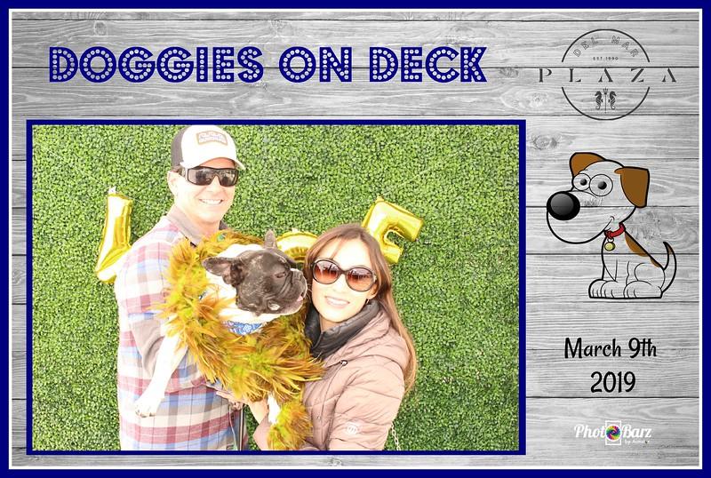 Doggys on Deck38.jpg
