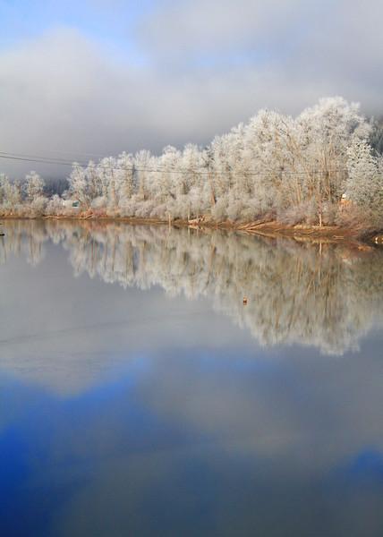 winter2019-1247.jpg