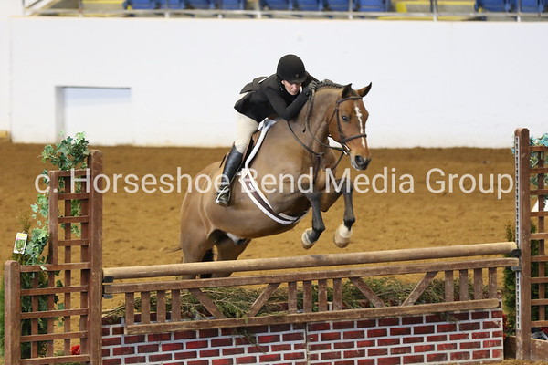 2021 The Spring Welcome Horse Show -- Saturday Morning -- Coliseum