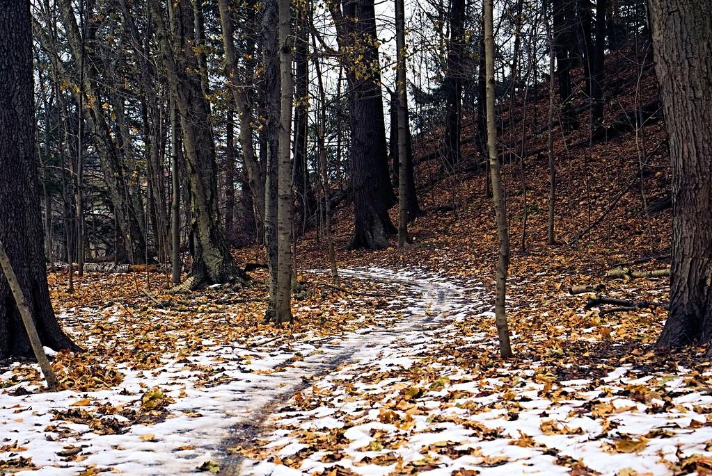 Don Valley Brickworks Park - Hiking trails in Toronto