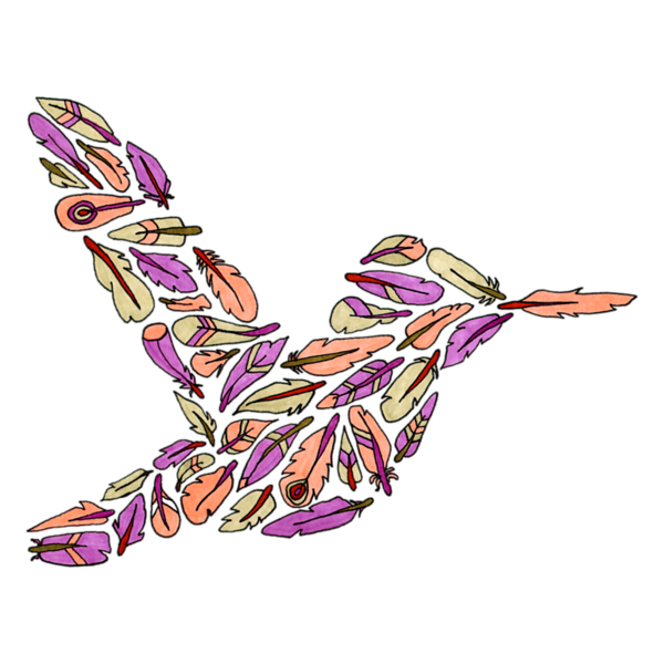 FeatherHummingbird4.png