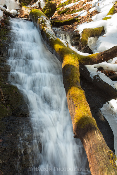 Fallen Tree and Waterfall III