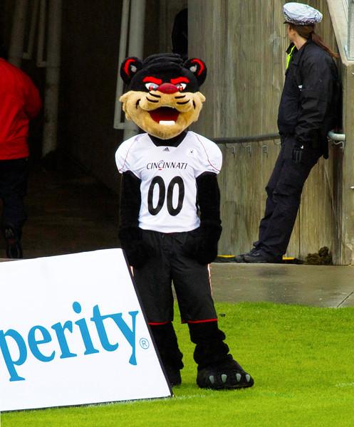 Cincinnati's Bearcat Mascot