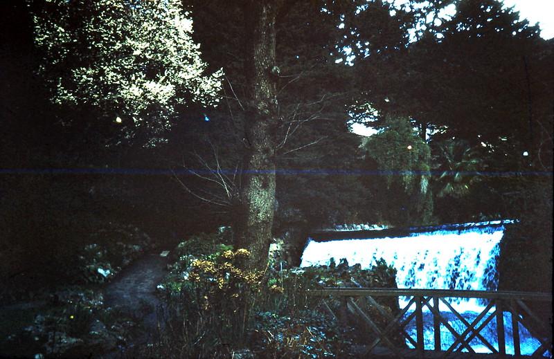 1959-3-15 Waterfall back of hostel, Cheddar, Somerset.JPG
