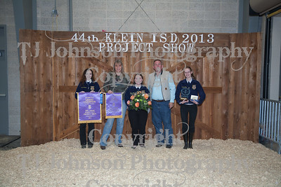 2013 Klein ISD Livestock Show Auction