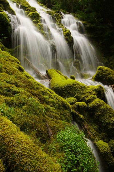 Upper Proxy Falls, Three Sisters Wilderness Area