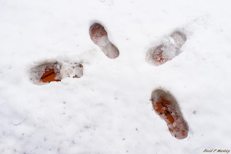Converging Footsteps