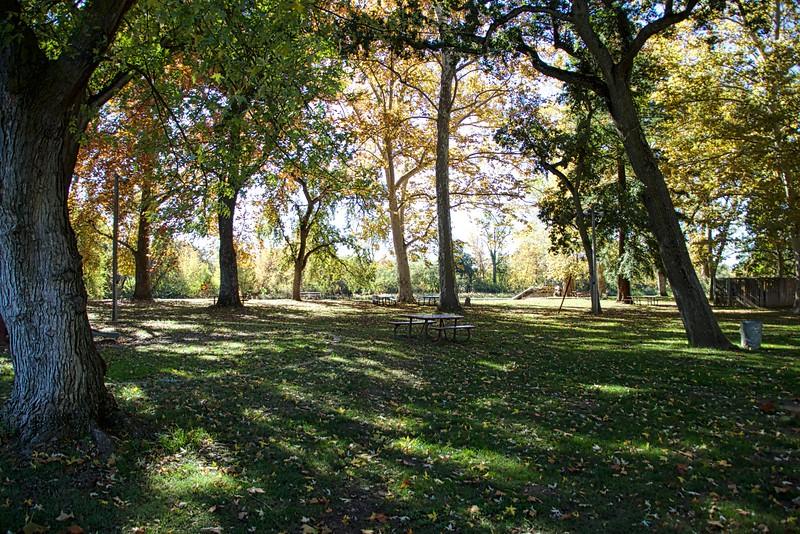 Henderson Park along the Merced River