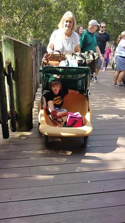 Jacksonville Zoo 11282015
