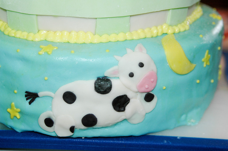2011.04.10-Baby.Shower.Cake 006.jpg