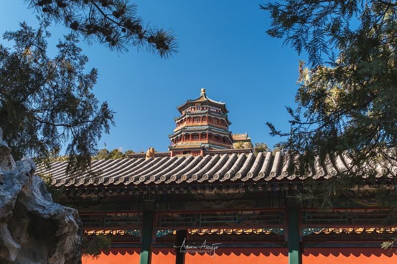 BeijingMarch2019-34.jpg
