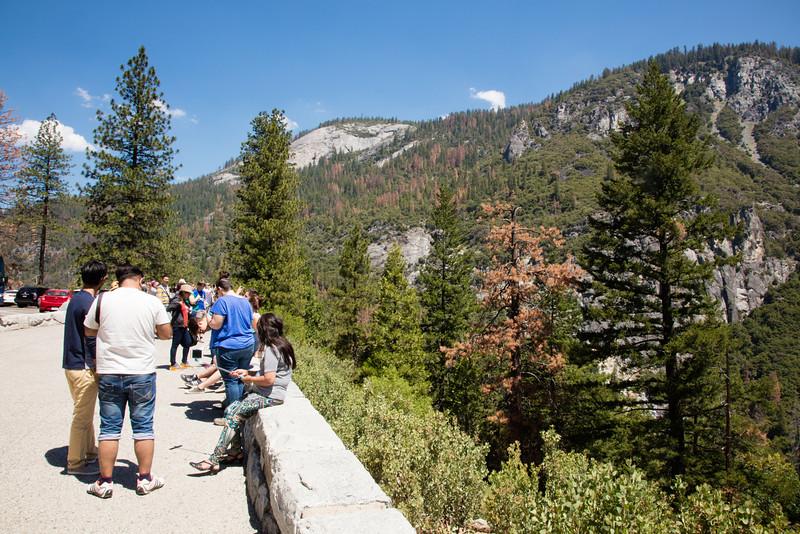 Yosemite_2016_Park-3.jpg