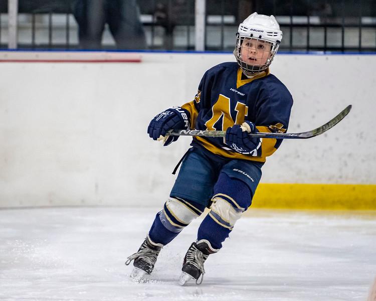 2019-02-03-Ryan-Naughton-Hockey-14.jpg