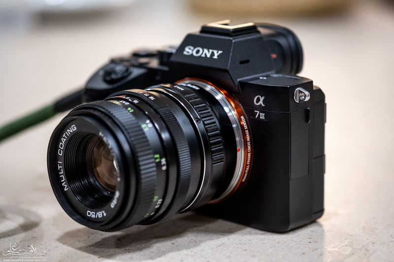 DSCF8380.jpg