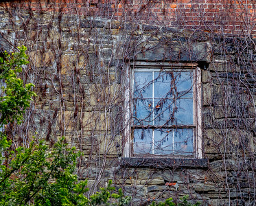 old doors and windows