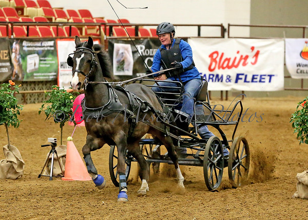 04/22/18 MHF Driving Derby - VSE & Ponies