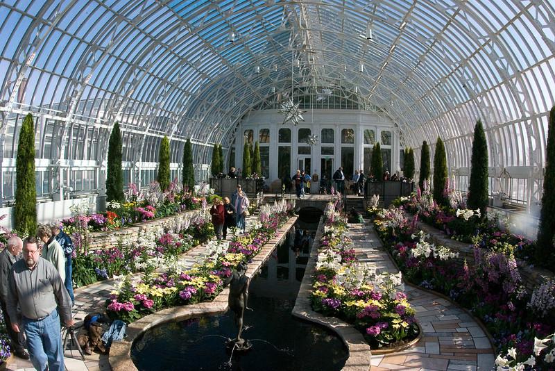 Como Park Conservatory-231.jpg