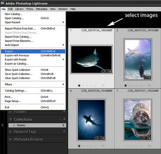 Uploading From Lightroom Windows to SmugMug using SendToSmugMug