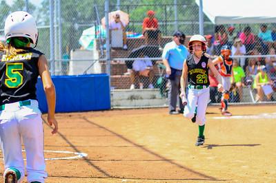 2014 Missisippi Dixie Softball State Tournament