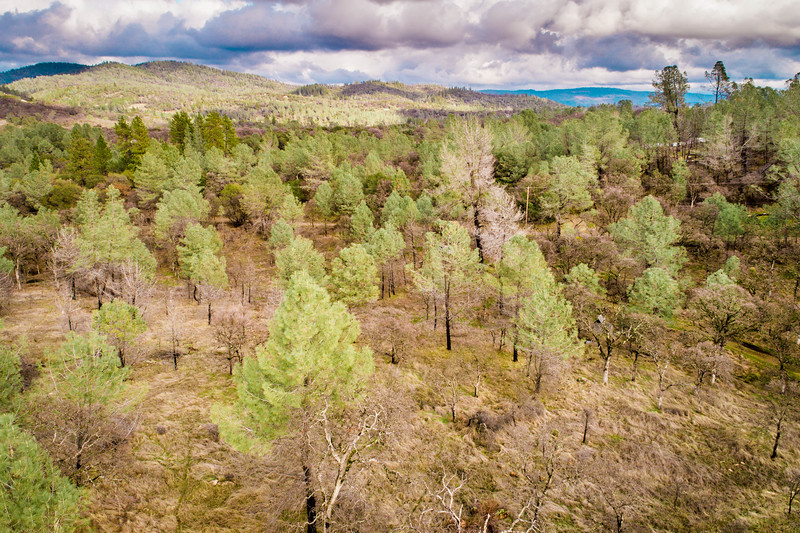 13916 Cascade Way-5.jpg