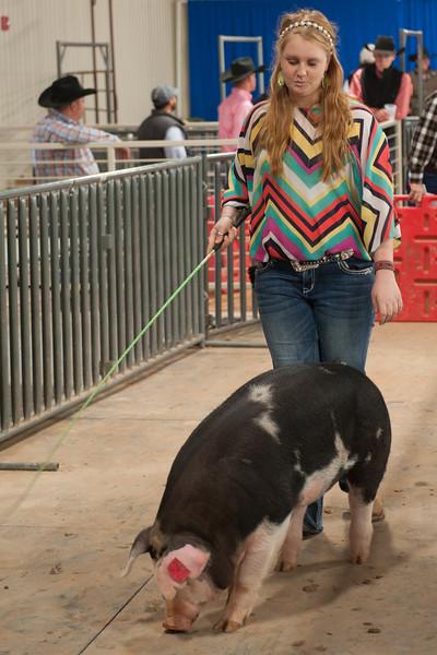 Hays County Show-9842.jpg