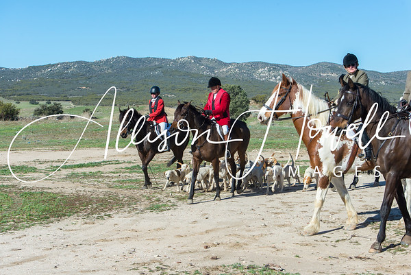 Santa Fe Hounds 2018