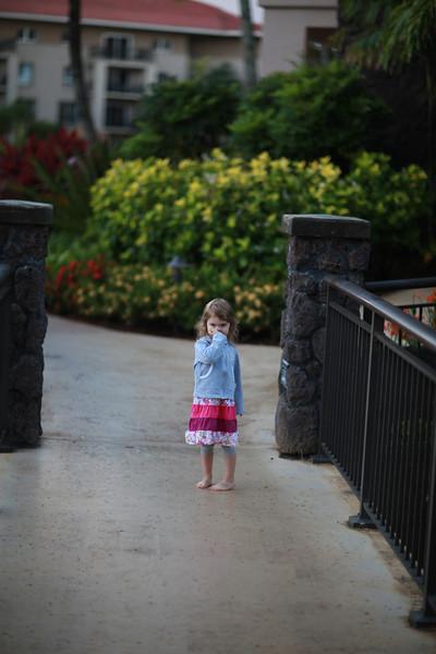Kauai_D2_AM 078.jpg