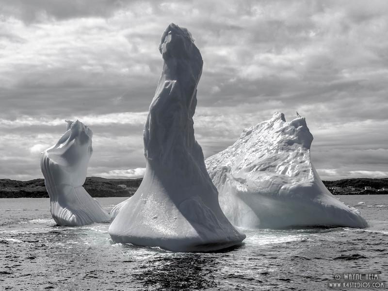 Icebergs  42  Black and White Photography by Wayne Heim