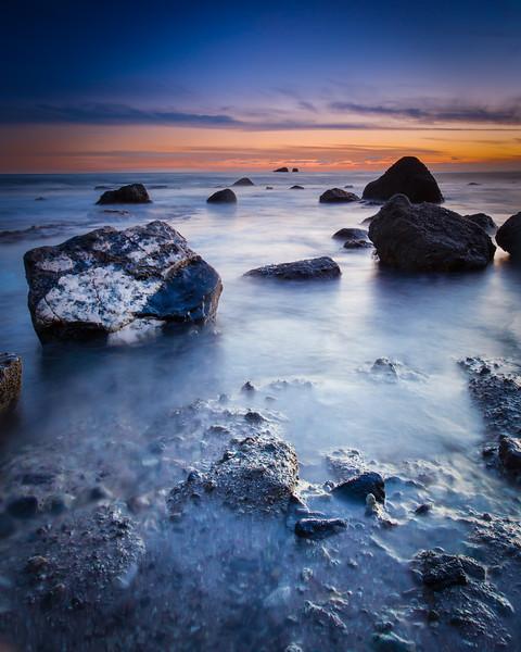 Coastal_Tribolet-97.jpg