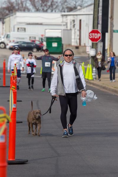 Richmond Spca Dog Jog 2018-520.jpg