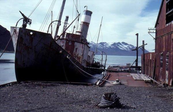 2042897744-Antarctica-7.jpg