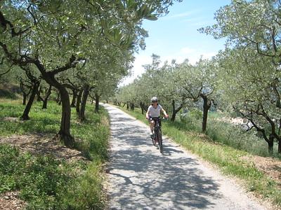 Spotlight: Southern Tuscany