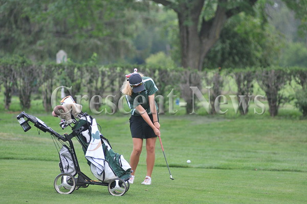 09-09-14 Sports DHS-Tinora girls golf quad match