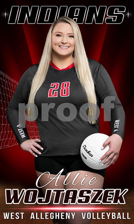 West Allegheny Volleyball Banners 2019