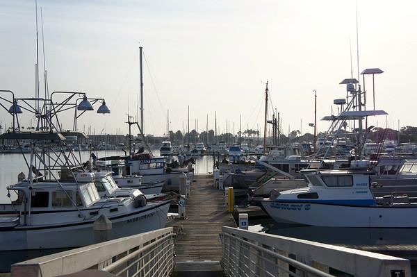 Santa Cruz Island - 3/29/14