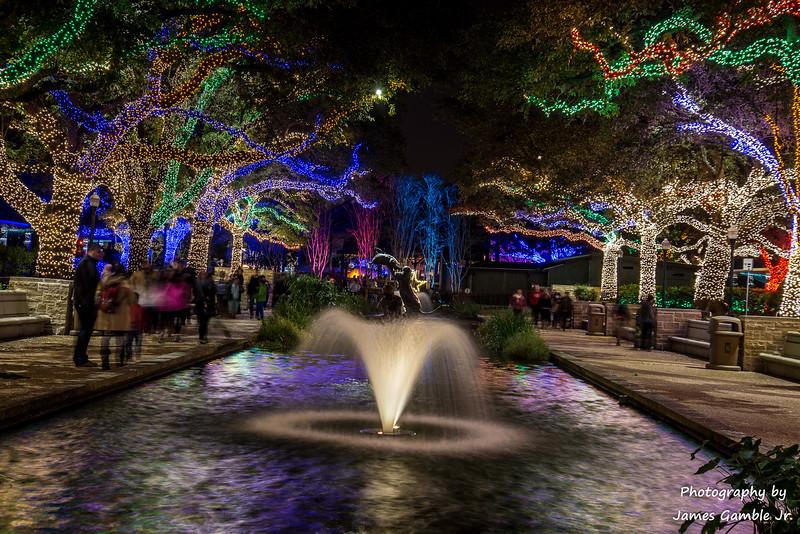 Houston-Zoo-Lights-2942.jpg