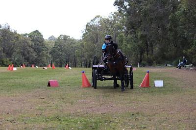 MDCDC   29.8.2020 small ponies & fun
