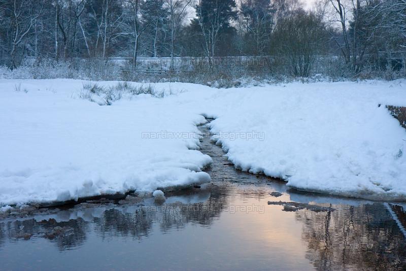 2010-12-22 Sutton Park