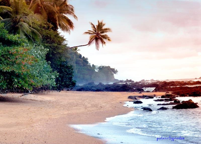 beach1375.jpg