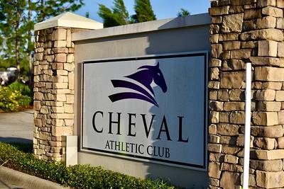 2017 Cheval Cares 5k - by Deborah White