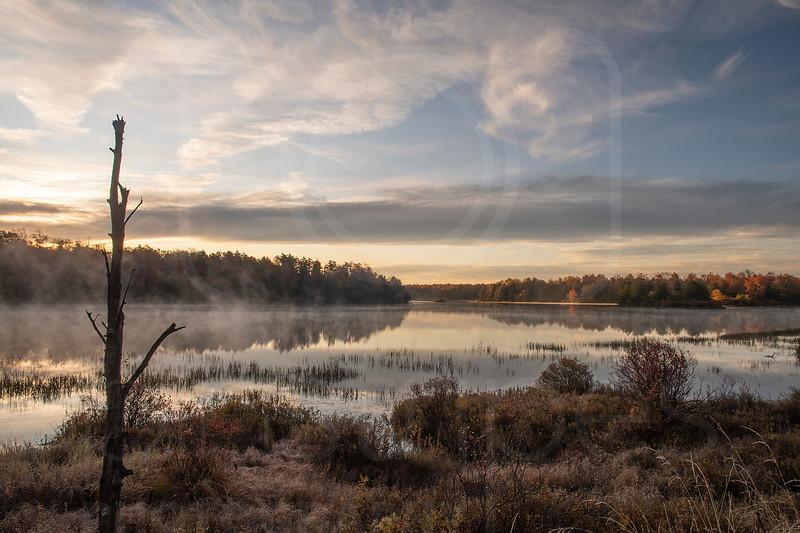 Lake Jean-DSC_7463 (1).jpg