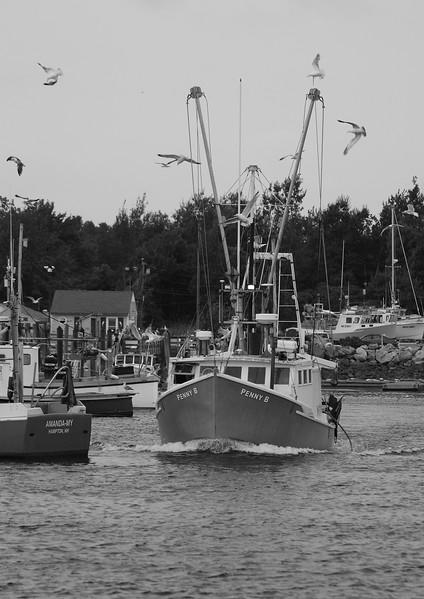 walewatchcoolboatblackandwhite.jpg