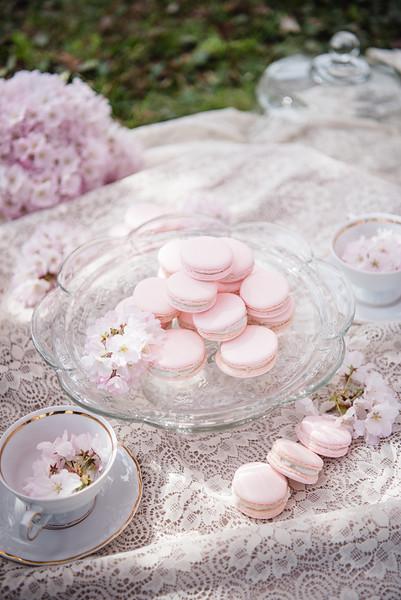 Cherry Blossoms (144 of 182).jpg