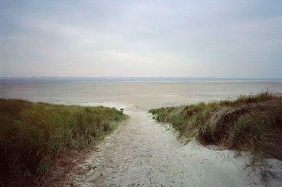 Texel 1996