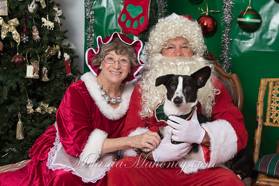 Santa Paws 2019 Day 2
