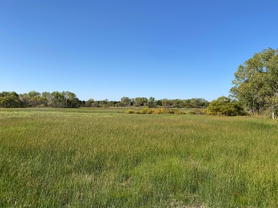 2020-10-13 Salt Plains National Wildlife Refuge